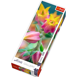 BOCCIOLI - FLOWERS IN BLOOM PUZZLE HOME GALLERY Pz.300 Produttori Vari Puzzle Die Cast Modellino